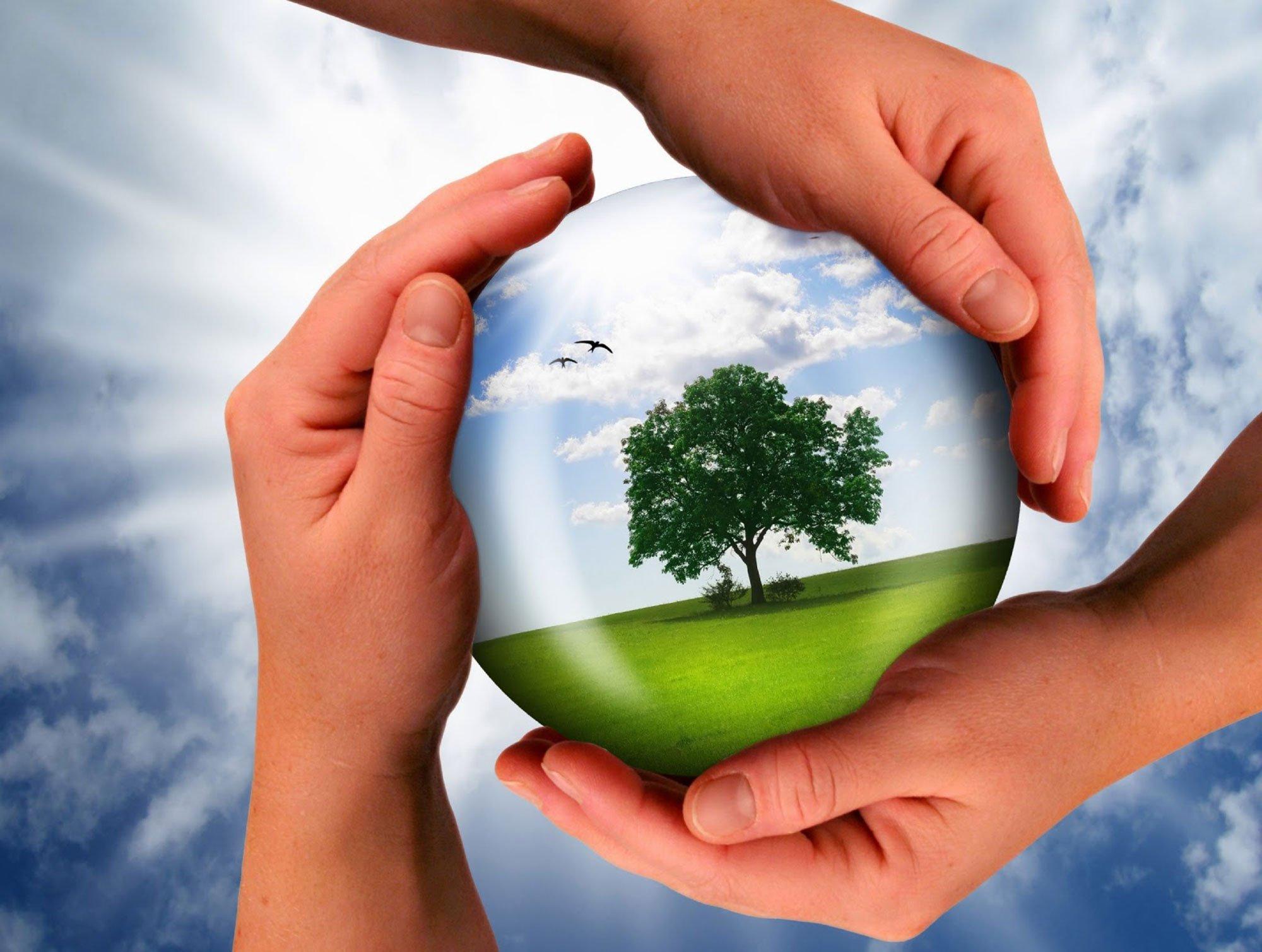 Картинки о экологии природы и мы, удачи счастья картинки